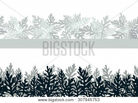 Seamless Horizontal Background Of Plants, Leaves Of Cineraria Maritima, Black And Grey On White. Vec