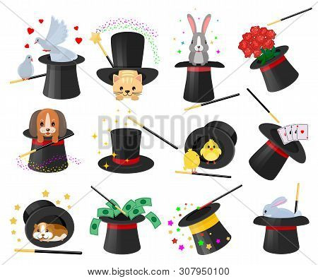 Magician Hat Vector Illusionist Show With Animal Character Cat Dog In Magical Hat Illustration Illus