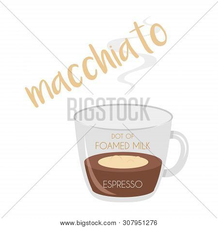 Vector Illustration Of A Macchiato Coffee Cup Icon With Its Preparation And Proportions.