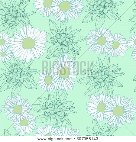 Vector Hand Drawn Floral Abstract Seamless Pattern. Camomile Flowers Floral Template Design For Styl