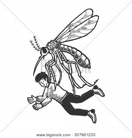Giant Mosquito Kidnaps Human Person Sketch Engraving Vector Illustration. Scratch Board Style Imitat