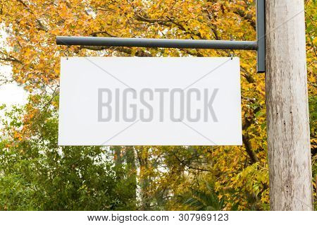 Advertising Empty White Blank Board Hanging On A Wooden Pole On The Right, With Nature Forest In The