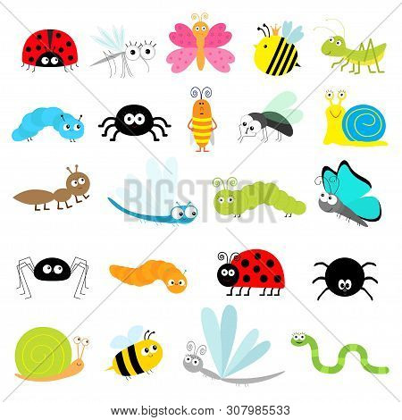 Insect Icon Set. Lady Bug Mosquito Butterfly Bee Grasshopper Beetle Caterpillar Spider Cockroach Fly