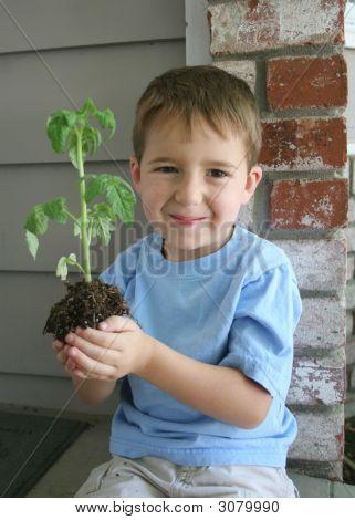 Growing Boy