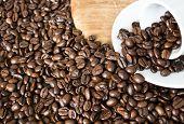 Eine umgekippte Espresso Kaffeetasse gefüllt mit Kaffeebohnen vor einem Feld aus weiteren Kaffeebohnen poster