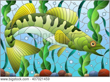 Illustration In Stained Glass Style With Pike Perch Fish On The Background Of Algae, Air Bubbles And