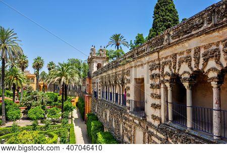 Seville Alcazar Gardens In Summer, Andalusia, Spain
