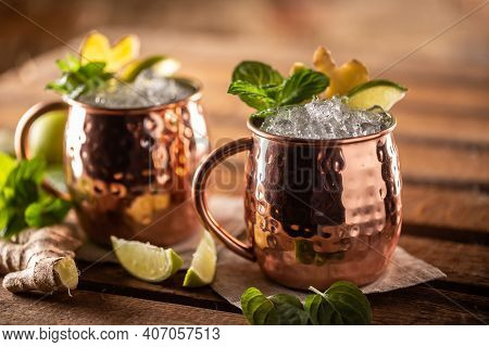 Moscow Mule Highball Cocktail And A Long Vodka Drink With Fresh Lime, Ginger Beer, And Mint