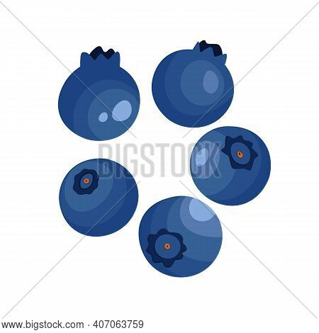 Blueberry Isolated On White Background. Natural Fresh Ripe Tasty Blueberries. Vector Illustration Fo