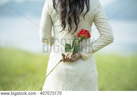 Woman Hand Holding Rose Flower Hiding Behind Back Side Rear View To Surprise Couple On Valentine's D