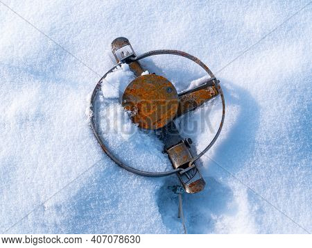 Iron Hunting Trap For Catching Wild Animals On White Snow. Animal Trap. Hunting For Animals. Poachin