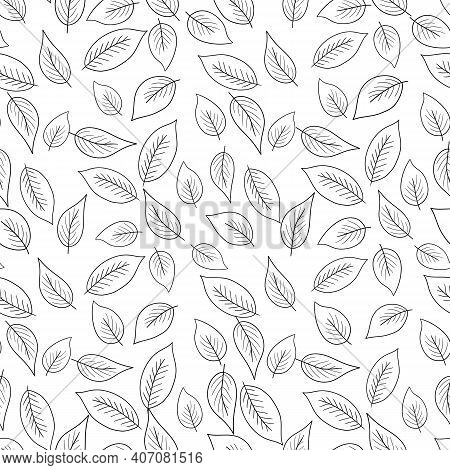 Floral Seamless Pattern With Black Silhouette Leaves On White Background. Tropic Branches. Fashion V
