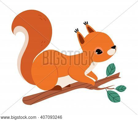 Red Fluffy Squirrel With Bushy Tail Sitting On Tree Branch Vector Illustration