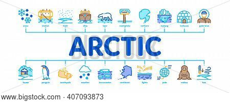 Arctic And Antarctic Minimal Infographic Web Banner Vector. Arctic Snow And Ice, Iceberg And Bear, S