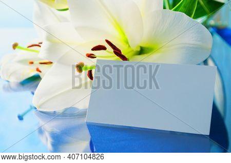 Spring flower background. Lily flower, Lilium Navona flower, with white blank card, spring flower background in soft tones, flower background, flower card, flower still life, flower composition, flower design