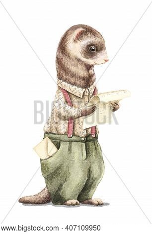 Watercolor Vintage Man Ferret In Shirt And Pants Holding And Read Letter Isolated On White Backgroun