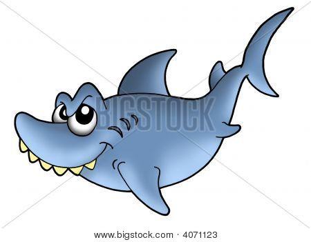 Color illustration of blue shark on white background. poster