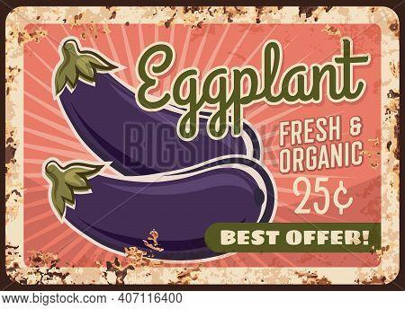 Eggplants Metal Plate Rusty, Vegetables Poster Retro, Vector Vintage Farm Market Food Price Menu. Eg