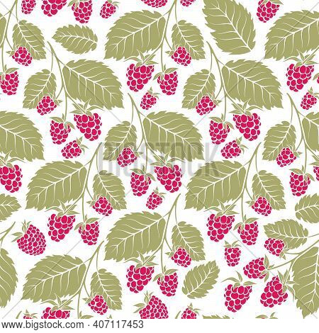Raspberry Seamless Vector Pattern. Decorative Garden Plants