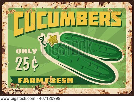 Cucumber Vegetable Metal Plate Rusty Of Farm Market Food Price Sign, Vector Retro Poster. Natural Or