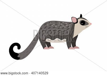 Exotic Flying Animal. Cartoon Fluffy Characters Of Zoo, Cute Beast Of Wildlife, Vector Illustration