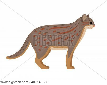Predator With Spots. Cartoon Fluffy Exotic Mammal, Cute Spotted Beast Of Nature, Vector Illustration