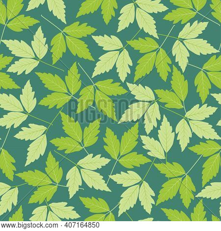 Elegant Trendy Ditsy Floral Vector Seamless Pattern Design Of Fresh Green Leaves. Repeating Texture