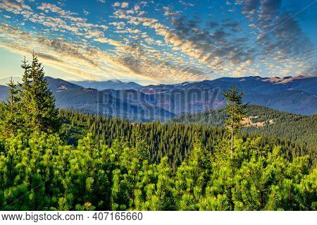 Sunset At The Carpathian Mountains Landscape Observed From A Hoverla Mountain With Tree Tops Visible