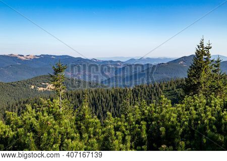 Carpathian Mountains Landscape Observed From A Hoverla Mountain With Tree Tops Visible On The Forest