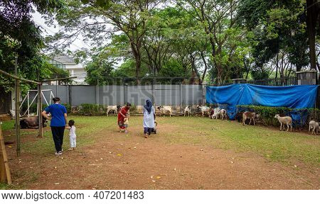 Jakarta, Indonesia - june 24, 2020: Families And Children Visiting Goats And Cows Tied Up In An I