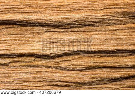 Texture Of A Log Or Log Split Across, Macro Shot, Wood Fibers Are Visible