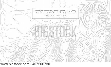 Topographic Map On White Background. Topo Map Elevation Lines. Contour Vector Abstract Vector Illust