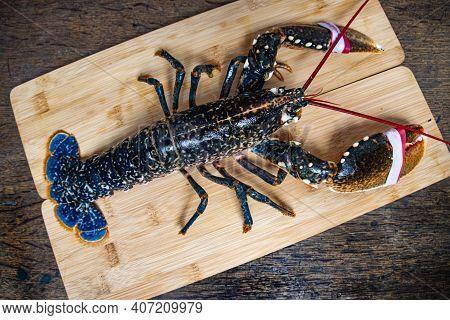 Fresh  Lobster   On Wooden Board   Whole  Lobster