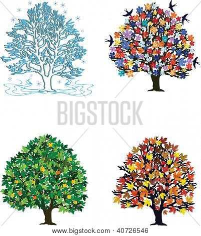 Four seasons �¢?? trees in spring, summer, autumn, winter