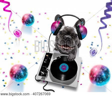 French Bulldog  Dog Playing Music In A Club With Disco Ball , Isolated On White Background, With Vin