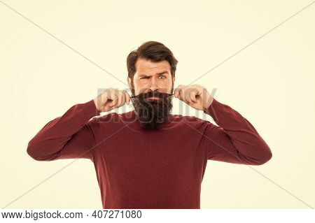 Long Mustache. Well Groomed Hipster. Barbershop Concept. Facial Hair Care. Mature Man Bearded Hipste