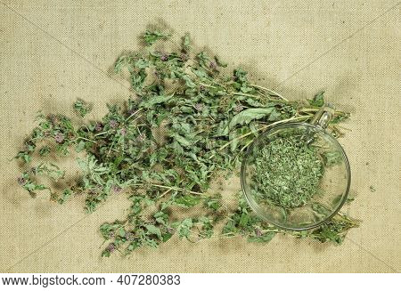 Mint, Spearmint. Dry Herbs For Use In Alternative Medicine, Phytotherapy, Spa Or Herbal Cosmetics. P