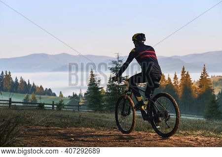 Back View Of Male Cyclist In Cycling Suit Riding Bicycle On Mountain Road With Coniferous Trees And
