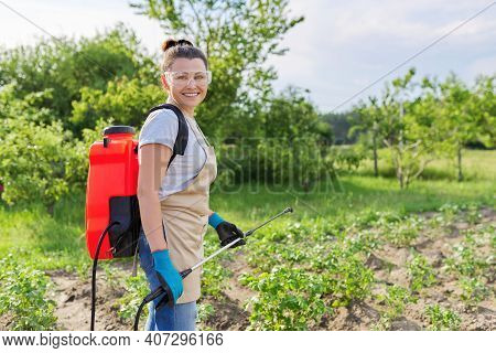 Woman Farmer Sprays Potato Plants In The Vegetable Garden, Using Backpack Sprayer, Protecting And Ca