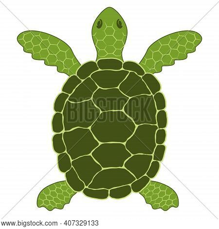 Simple Vector Illustration Of A Green Sea Turtle (chelonia Mydas). Schematic Conceptual Image Of A P