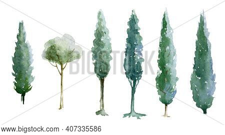Green Tree Watercolor Illustration Set. Natural Cypress Trees. Hand Drawn Leafy And Evergreen Tree E