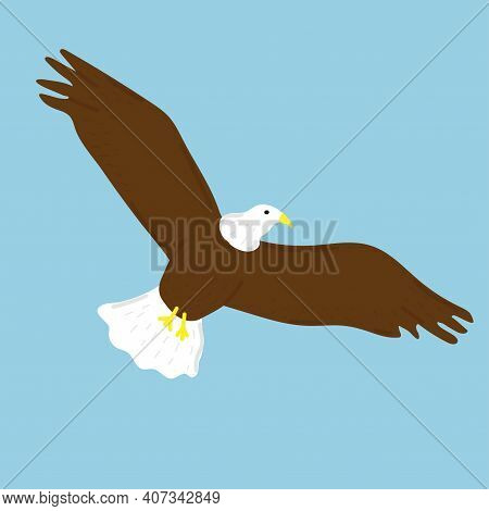 Bald Eagle With Golden Beak. Hand Drawn Vector Illustration Isolated On White Background