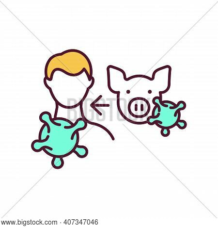 Swine Influenza Rgb Color Icon. Zoonotic Disease. Viral Infection Transmission From Animal To Human.
