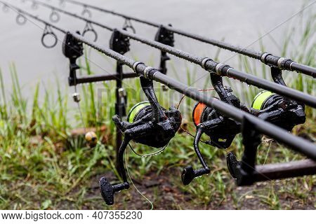 Carp Spinning Reel Angling Rods On Pod Standing. Carp Rods,carpfishing Session At The Lake.professio