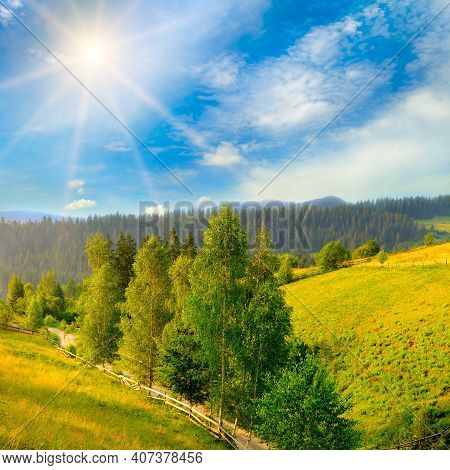 Beautiful Summer Mountain Landscape. Vast Meadows And Forest Lit By The Midday Sun.