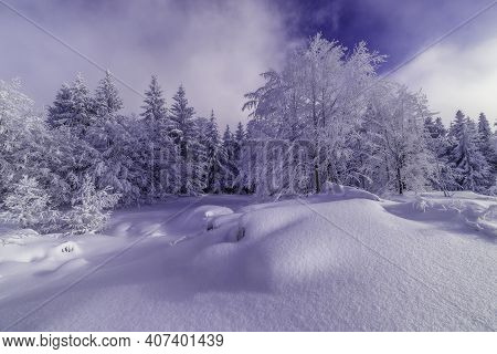 Sunny Snowy Landscape With Trees In The Mountains