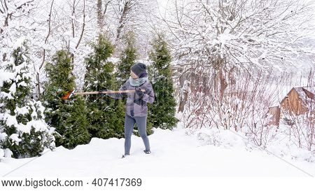 Figure 2. After Clearing Snow From Garden Conifers. The Gardener Cleans The Snow From The Trees With