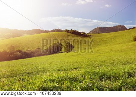 Green Meadow On Sunny Day.beautiful Hilly Landscape In Background.