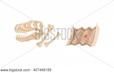 Dinosaur Skeleton And Map, Archeology And Paleontology Science Concept Cartoon Vector Illustration