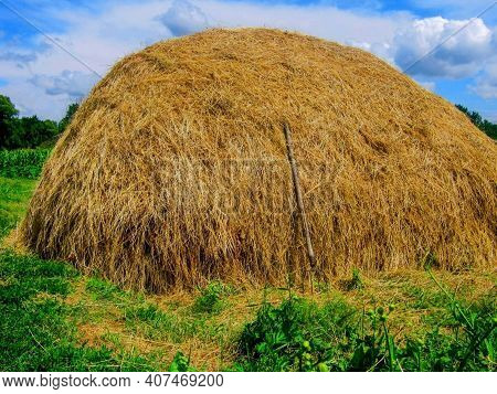 Hay Stack Or Haystack & Hayforks For Horse Feed On Blue Sky Background. Mowed Dry Grass (hay) In Sta